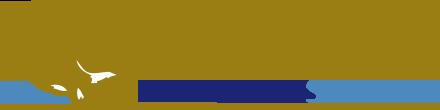 The-hieco-logo